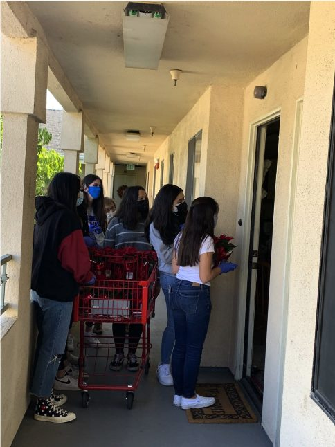 interact club delivering groceries